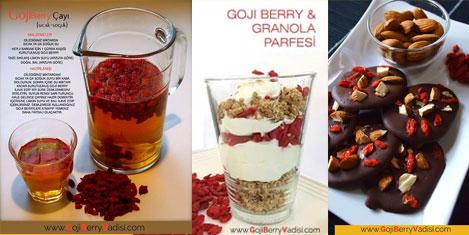 goji-berry-2.jpg