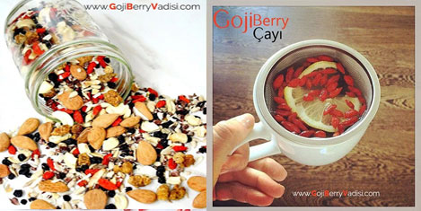 goji-berry-5.jpg