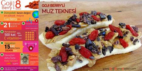 goji-berry-7.jpg
