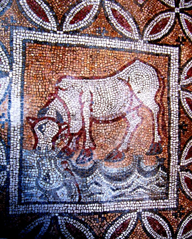 hadrianapolis-antik-kenti--005.jpeg
