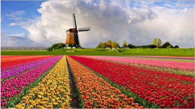 hollanda-turizm-kurulu-001.png