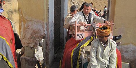 jaipur-fil-4.jpg