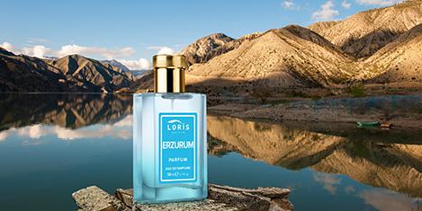 loris7.jpg