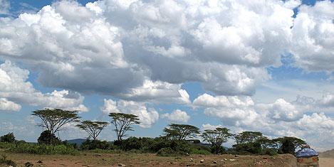masai-mara-manzara1.jpg
