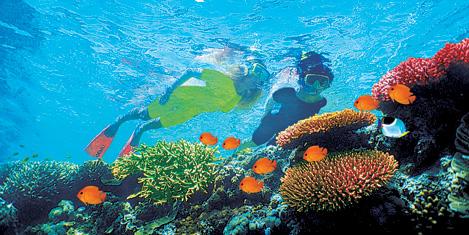 mauritius1.20140117234516.jpg