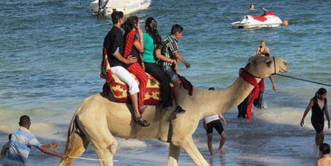 mombasa-deve3.jpg