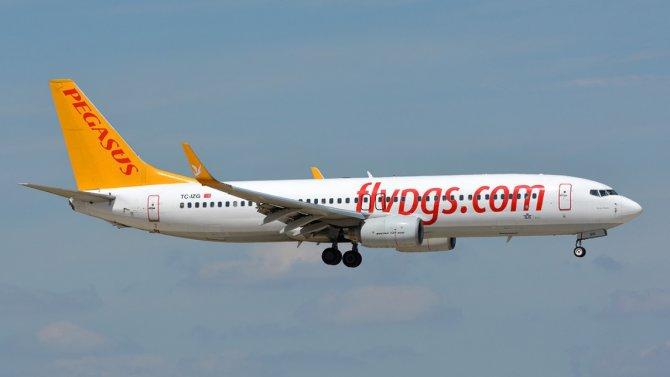 pegasus-boeing-737-800-.png