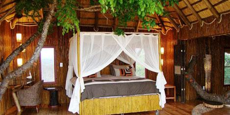 southafrican_honeymoon1.jpg