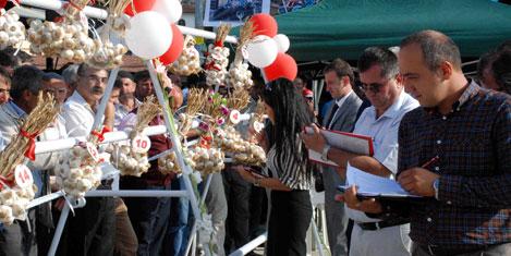 taskopru-sarimsak-festivali-9.jpg