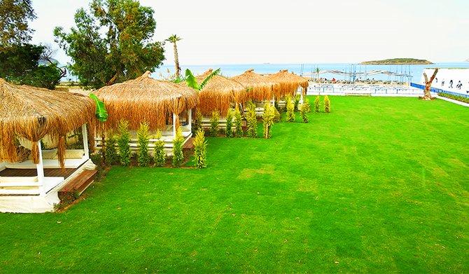 tiana-beach-resort--001.png
