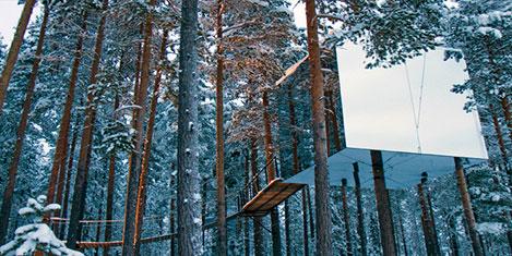 tree-hotel.20150102020030.jpg
