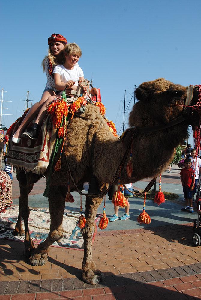 turistlerin-deve-turu-007.jpg