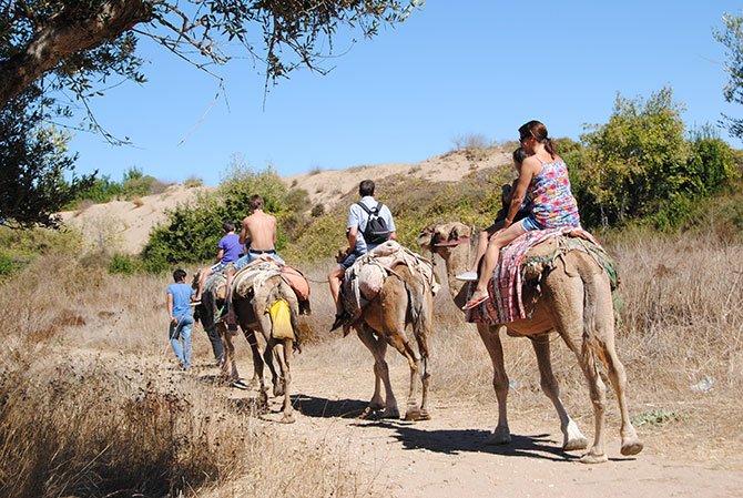 turistlerin-deve-turu.jpg