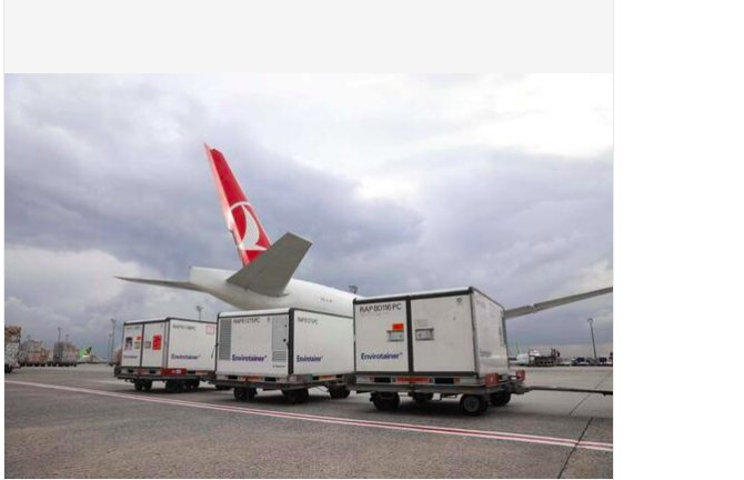 turkish-cargo-covid-19--002.png