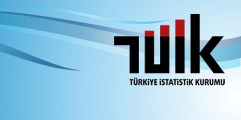turkiye-istatistik-kurumu-tuik.jpg