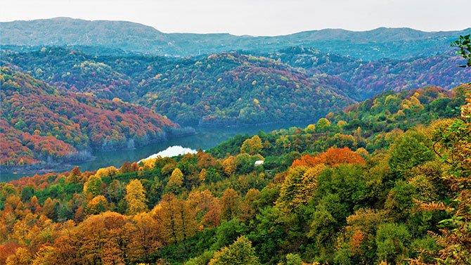turkiye-ormanlari--001.jpg