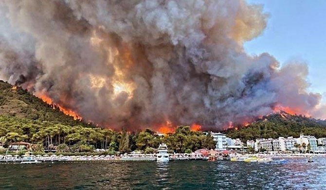 yanan-ormanlar-rant-003.jpg