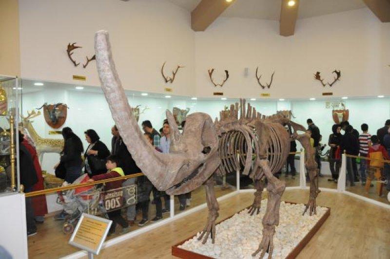 zooloji-muzesi-gaziantep-005.jpg