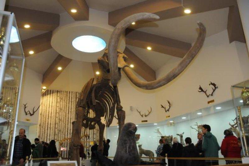 zooloji-muzesi-gaziantep-007.jpg