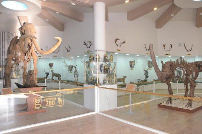 zooloji-muzesi-gaziantep-009.jpg