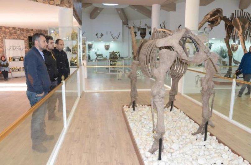 zooloji-muzesi-gaziantep-011.jpg