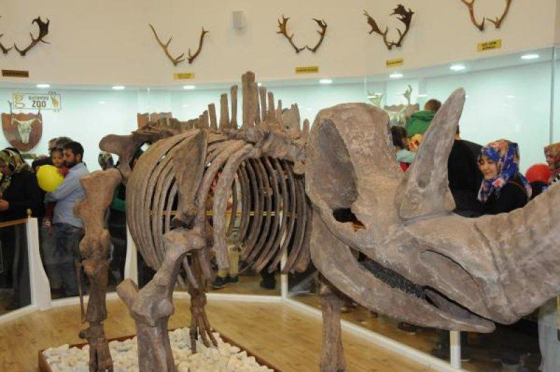 zooloji-muzesi-gaziantep-015.jpg